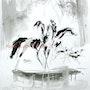 «Les Dianes» cavalières à cheval en forêt, chasseresses, dessin à l'encre noire. Michel Charrier