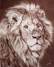 Lion d'Asie.