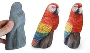 Macaw. Roberto Rizzo