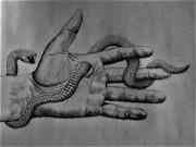 Sueño con serpientes!.