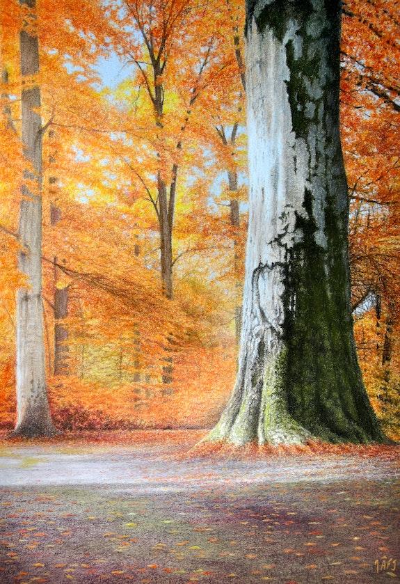 Autumn sunbeams in Herefordshire. Ivan Jones Ivan Jones