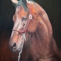Warmblood horse portrait. Ivan Jones