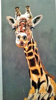 Sophie la girafe du zoo de La Palmyre en Charente - Maritime. Michel Moreau