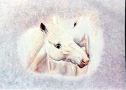Equus III.