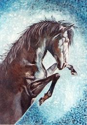 Equus VI.