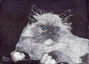 Ilustracion realizada en tinta china. -.