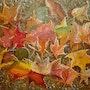 Couleurs d'automne. J. Ray