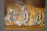 Tigre en descanso.