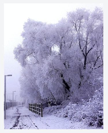 Tombe la neige. Abir Hassouna