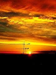 Sunrise silhouetting cranes. George Hutton Hunter
