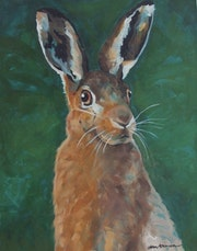 Portrait of a Hare.