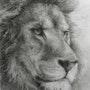 Tête de lion songeur. Thérèse Hutin