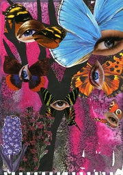 The Butterflies eyes. Viqui R. Gallardo