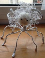 L'araignée fait sa toile.