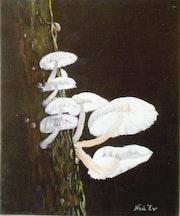 «Les Champignons» Acrylique.