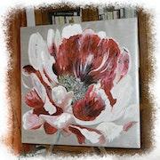 La fleur de l'AGE.
