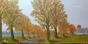Die Farben des Herbstes.