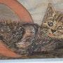 Le chaton. Michel Pernin
