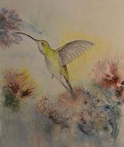 Le colibri à gorge rubis. Jean-Pierre Lemoine