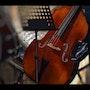 Le Silence de l instrument…. Nadidomp