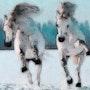 Chevaux aux galop. Marie Carteron
