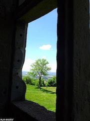 Fenêtre sur cour. Marie-José Basile