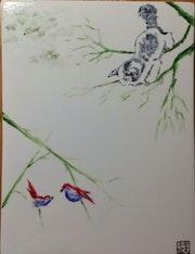 Chaton et oiseaux en équilibres.