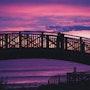 Crépuscule violet sur l'Océan. Stéphane Huet