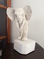 Elephant d'afrique.