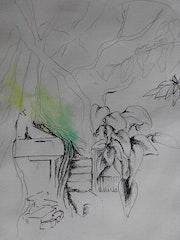 Végétation 2.