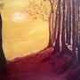 Fin d'un chemin dans la forêt qui mène à clarté. --End of a path in the woods….