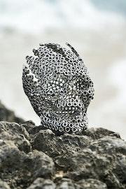 Crâne éclaté. Jean Martin