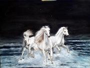 La nuit des chevaux blancs. M-j m