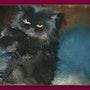 Le chat persan une peluche vivante. Youdit