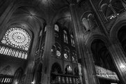 Notre Dame. Thierry Gouvernet