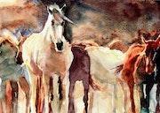Le troupeau de chevaux.