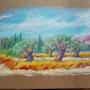 Etude champs oliviers. Sandrine Millet