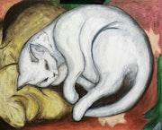 «Gato sobre almohada amarilla», «Chat sur un oreiller jaune».