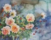 Des roses en liberté.