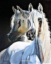 Arabian 2. Alvaro