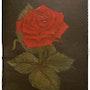 Die Rose. Andrea Meklenburg - Saß