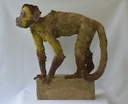 Curious capuchin. Barake Sculptor
