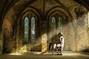 Centaure dans l'abbaye de Beauport en Bretagne. Bat