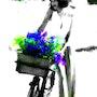 La bicyclette. Marie Carteron
