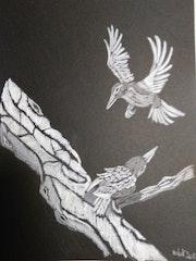 Oiseaux sur la branche. Mireille Vast