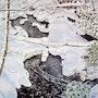 L'hiver au Québec Aquarelle n°3. Françoise-Elisabeth Lallemand