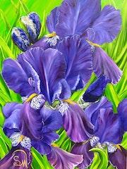 Irisblüten 2.