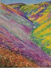Montagnes fleuries des Andes.