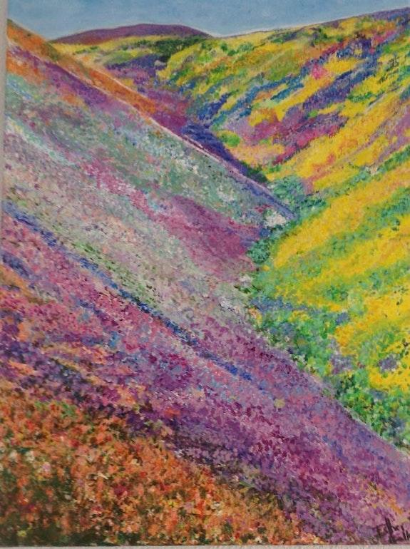 Montagnes fleuries des Andes. Esther Pardo Ballester Esther Pardo Ballester / Eart