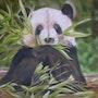 «Panda». Dany Serva